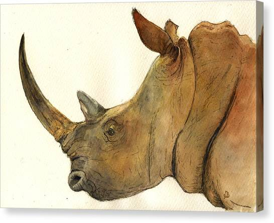 Rhinos Canvas Print - White Rhino Head Study by Juan  Bosco