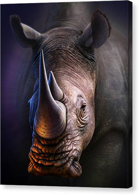 Rhinos Canvas Print - White Rhino by Jerry LoFaro