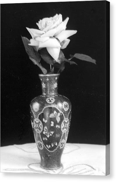 White Rose Antique Vase Canvas Print