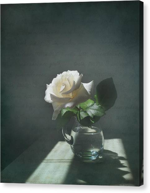 White Rose Still Life Canvas Print
