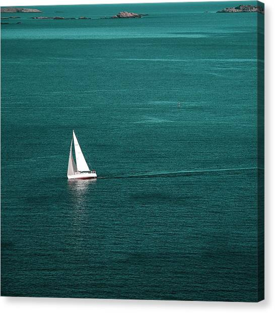 White Sailboat Canvas Print