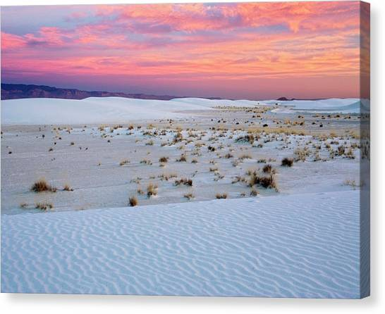 White Sands National Monument Canvas Print by Bob Gibbons/science Photo Library