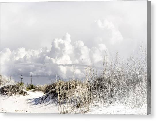 White Sands Winter Canvas Print