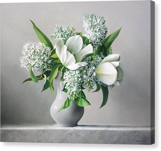 Tulips Canvas Print - White  Sprintime  Flowers by Pieter Wagemans