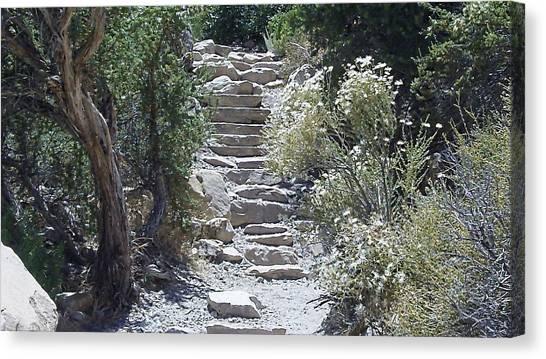 White Steps Canvas Print