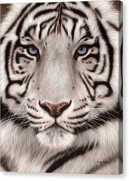 White Tiger Painting Canvas Print