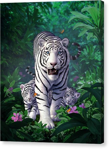 Tigers Canvas Print - White Tigers by Jerry LoFaro