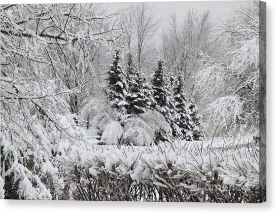 White Winter Day Canvas Print
