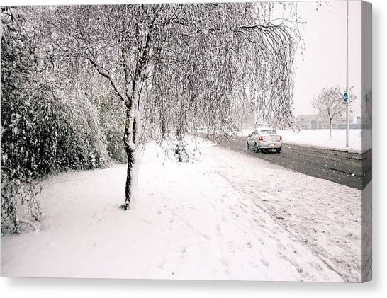 White World Canvas Print
