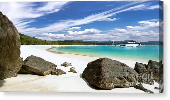 Whitehaven Beach Canvas Print by Shannon Rogers