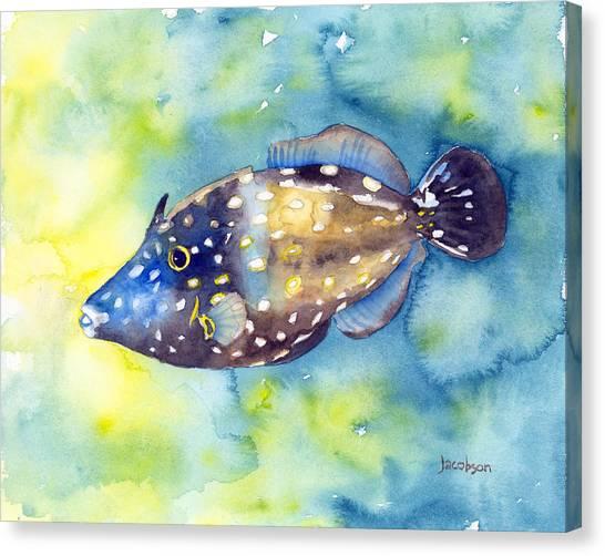 Whitespot Filefish Canvas Print