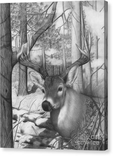 Whitetail Phantom Canvas Print