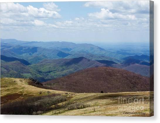 Whitetop Mountain Virginia Canvas Print
