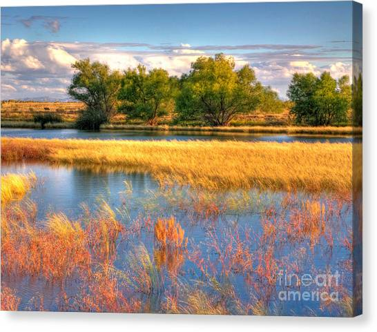 Whitewater Draw Canvas Print