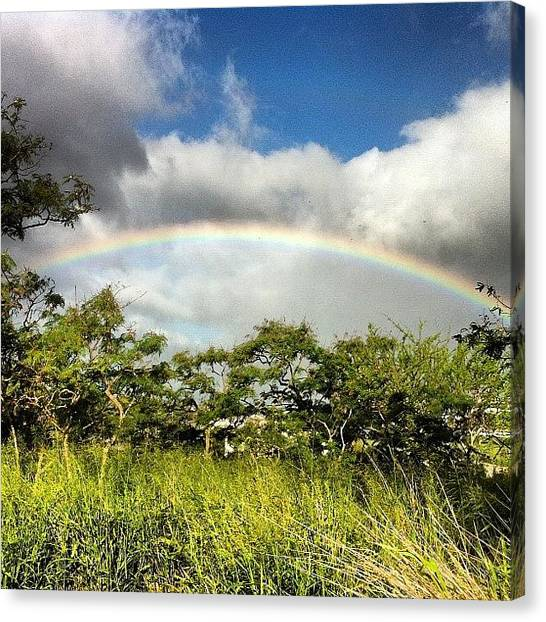Hawaii Canvas Print - Who Doesn't Love A Good Rainbow? by Brian Governale