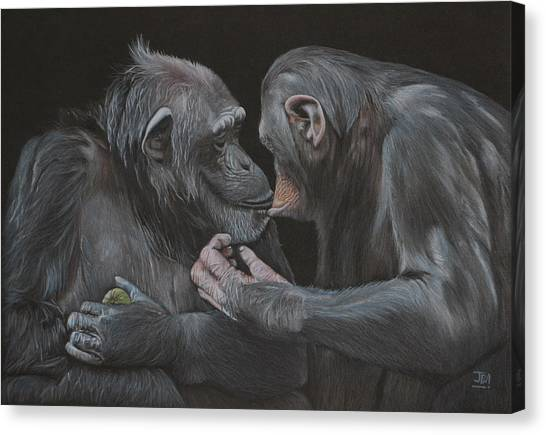 Canvas Print - Who Gives A Fig? by Jill Parry