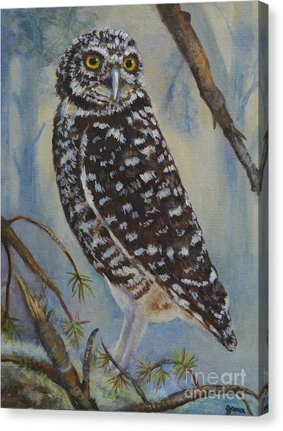Whoo Cares Canvas Print by Jana Baker
