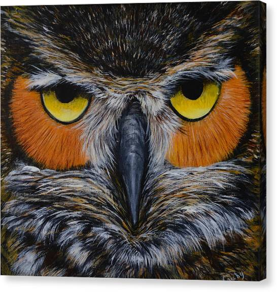 Whooo Is Looking At You? Canvas Print
