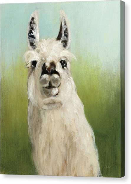 Llamas Canvas Print - Whos Your Llama I by Julia Purinton