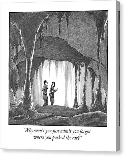 Caverns Canvas Print - Why Won't You Just Admit You Forgot Where by Harry Bliss