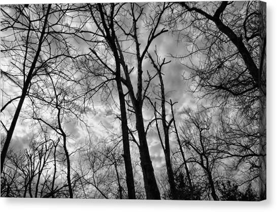 Wicked-spooky Canvas Print by Kelly Kitchens