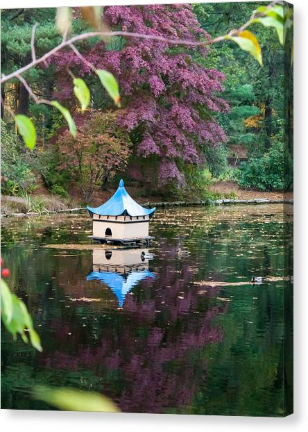 Wickham Oriental Pond Canvas Print