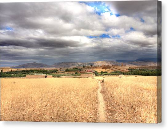 Wide Land Canvas Print