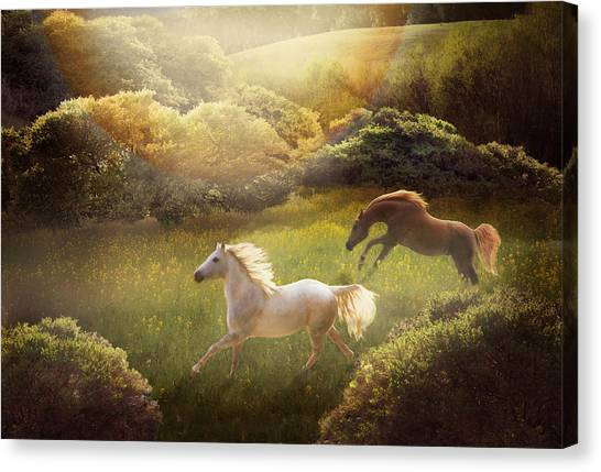 Canvas Print featuring the photograph Wild And Free by Melinda Hughes-Berland