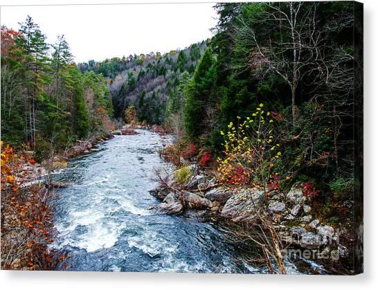 Wild And Scenic Obed River Canvas Print