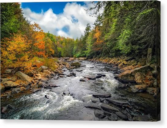 Wild Appalachian River Canvas Print