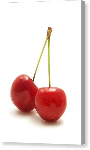 Wild Cherry Canvas Print