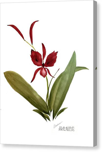 Wild Chinese Orchid #2 Canvas Print