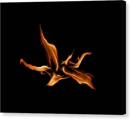 Wild Fire Canvas Print