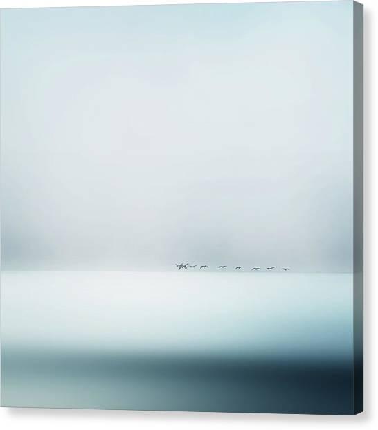 Sea Bird Canvas Print - Wild Geese by Piet Flour