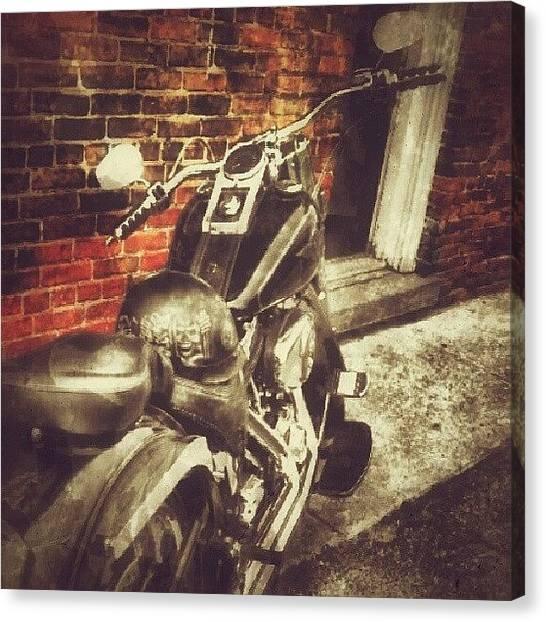 Hogs Canvas Print - Wild #hog. #motorcycle #portdover by Drew Vanderwal