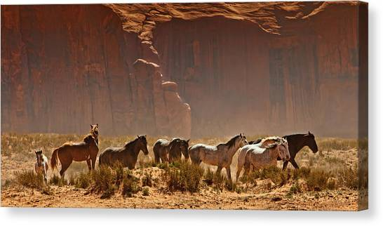 Indian Canvas Print - Wild Horses In The Desert by Susan Schmitz