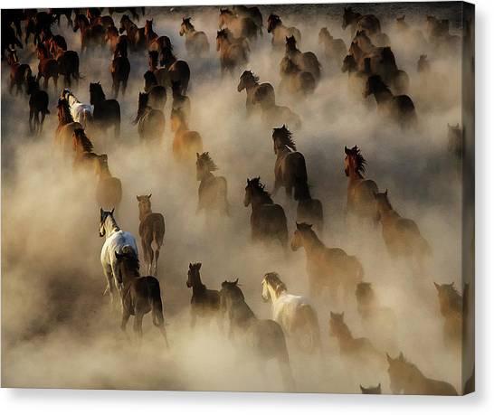 Horses Galloping Canvas Print - Wild Horses by Mehmet Bedir