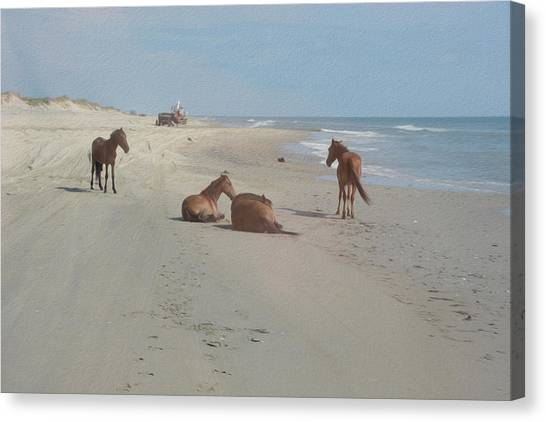 Wild Horses On The Beach Canvas Print
