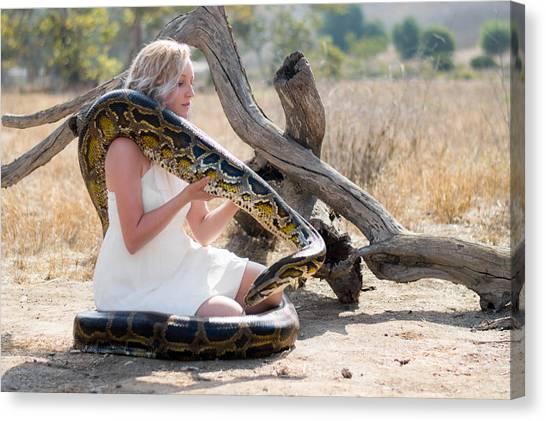 Burmese Pythons Canvas Print - Wild Humanity Simon The Burmese Python by Hanh Doan