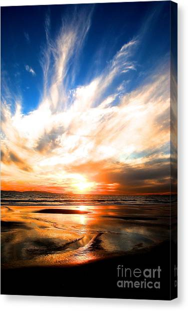 Wild Night Sky Canvas Print