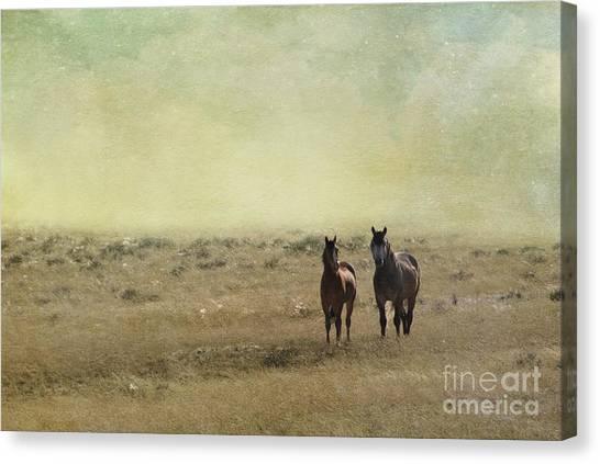 Independent Canvas Print - Wild Pair by Juli Scalzi