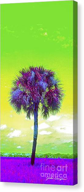 Wild Palm 3 Canvas Print
