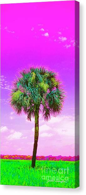 Wild Palm 4 Canvas Print