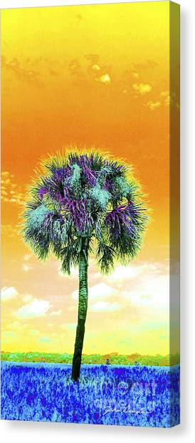 Wild Palm 5 Canvas Print