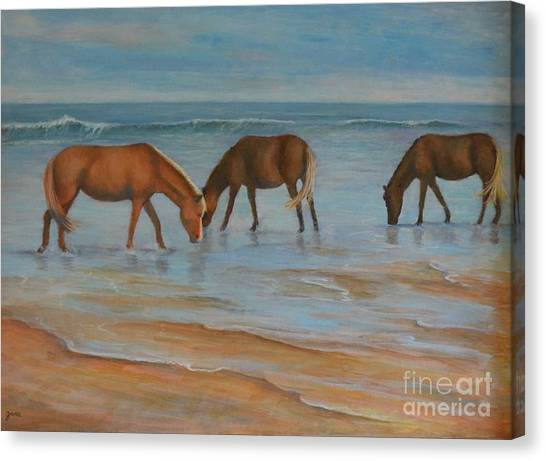 Wild Ponies Canvas Print by Jana Baker
