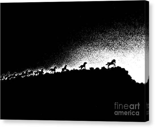 Wild Stallions Silhouette Canvas Print