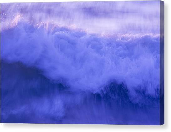 Wild Waves Canvas Print