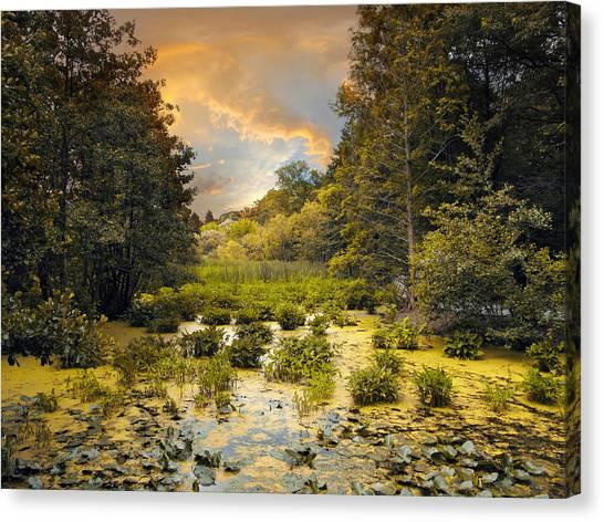 Wetlands Canvas Print - Wild Wetlands by Jessica Jenney