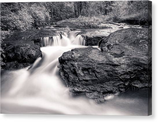 Wilderness River Canvas Print