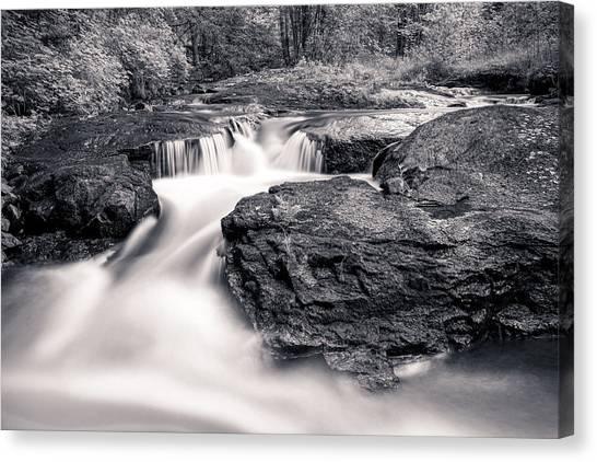 Wilderness River Canvas Print